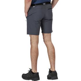 Regatta Xert III Stretch Shorts Heren, seal grey